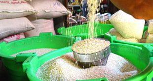Burma Rice Trade