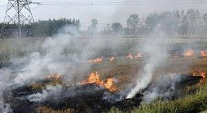 NRC nod for Tripura